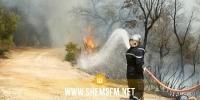 بينها 80 لإطفاء حرائق: 437 تدخلا للحماية المدنية في حوادث مختلفة خلال 24 ساعة