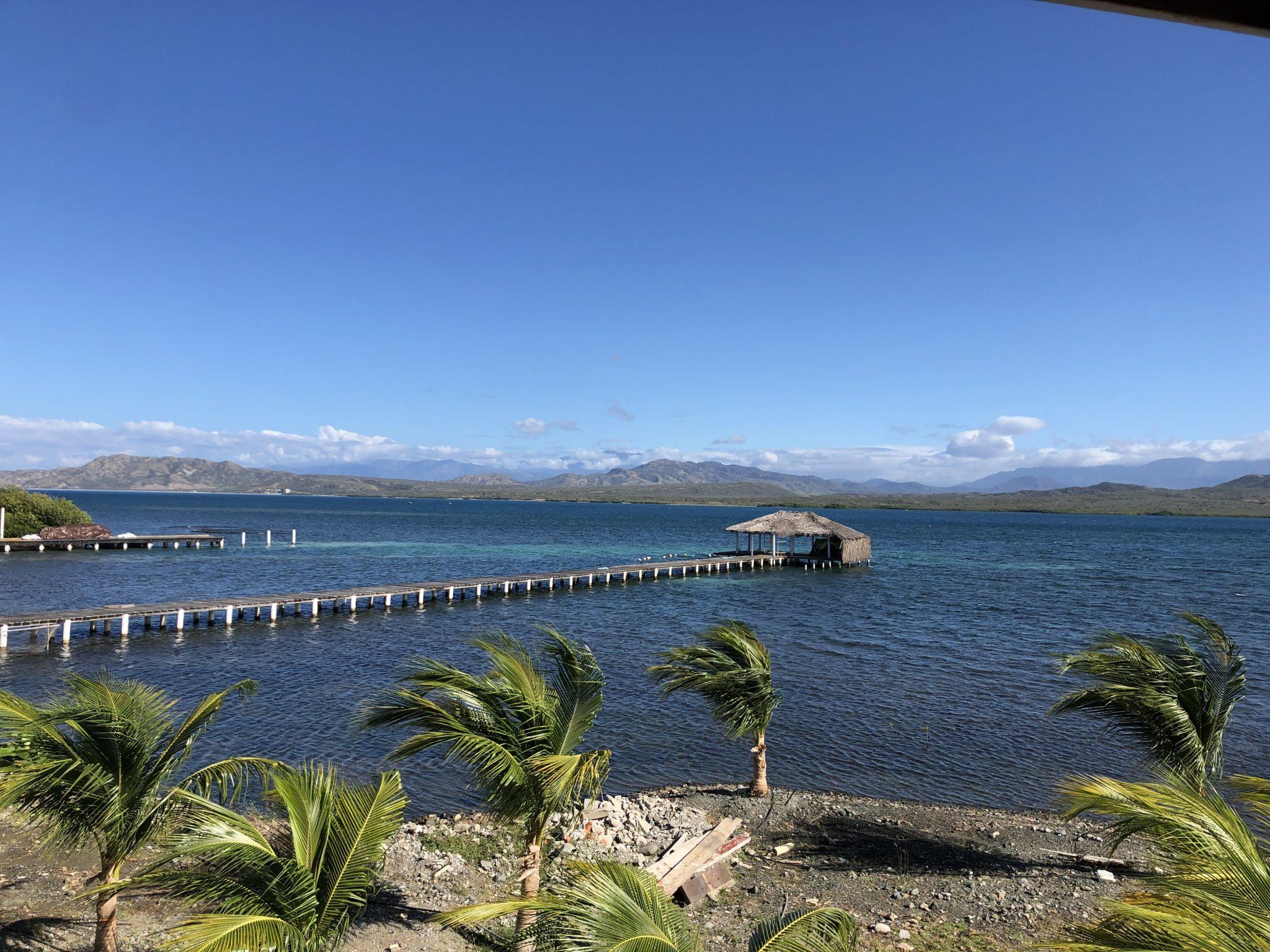 view of palm trees and ocean salinas de bani