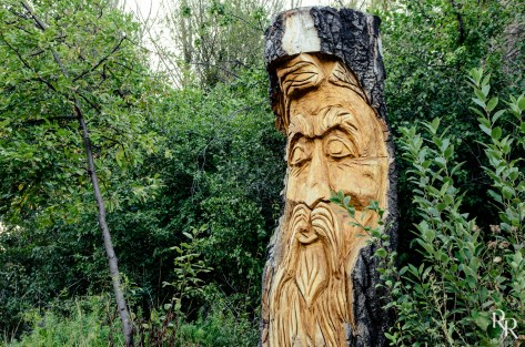 Chainsaw art in Kendrick Park 2015 Photo by Ron Richter