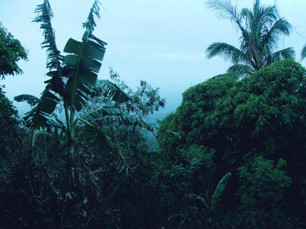 Mount Maculot