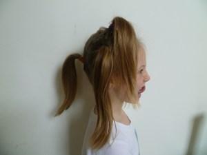 A Crazy Hair 2