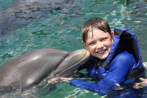 Swimming with Dolphins in the Dominican Republic