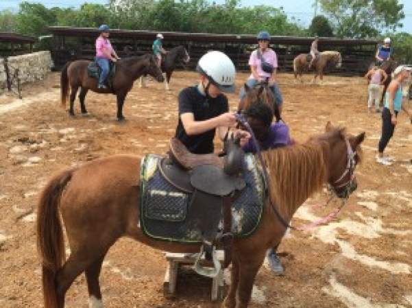Turks and Caicos horseback Provo Ponies