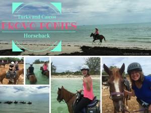 Turks and Caicos Horseback Riding at Provo Ponies