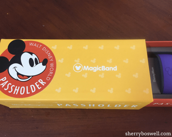 No surprise that an Annual Pass would show up on our holiday gift guide for Disney fans (hint, hint)