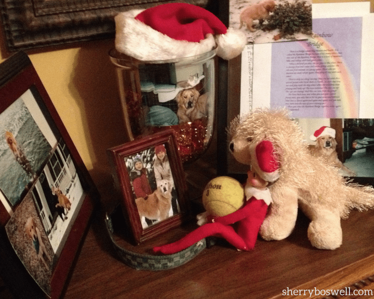 Making elf on the shelf work for older kids sometime works out naturally, like having the elf grieve with us when our golden retriever died.