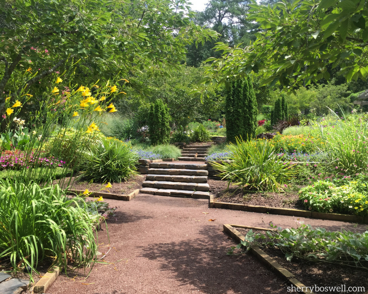 Durham Things to Do | Even rabbits approve of the habitat offered at the Sarah P Duke Garden in Durham
