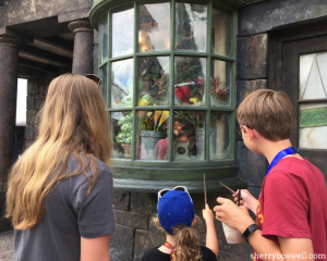 Universal Orlando's Wizarding World of Harry Potter Tips