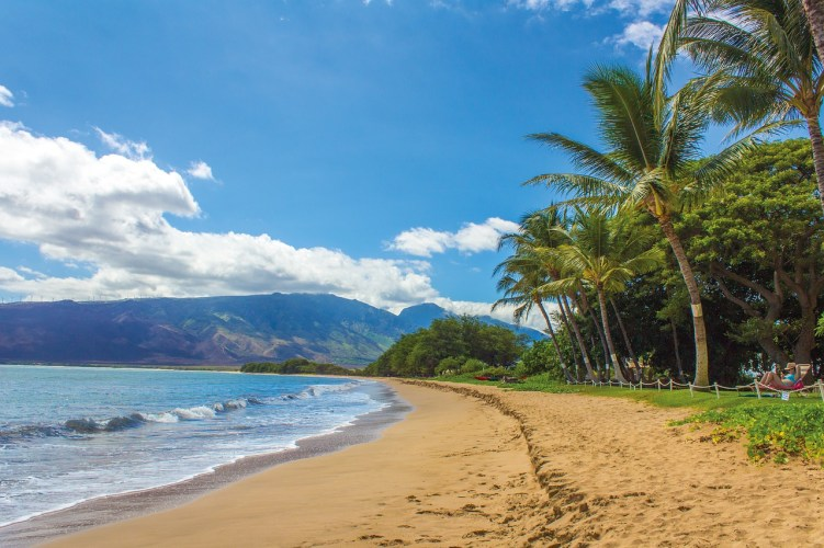 18 Travel Destinations in 2018 | Hawaii beaches are calling me.