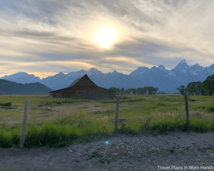 BrushBuck wildlife tour in the Grand Teton National Park in Jackson Hole makes a point to show off Mormon Row and Moulton Barn during the tour.