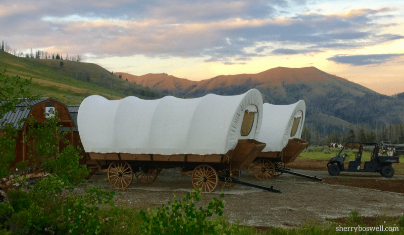 Our Jackson Hole guide includes these covered wagons at the Goosewing Ranch glamping site.