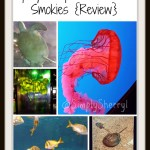 Ripley's Aquarium of the Smokies {Review}