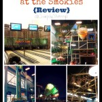 Wilderness at the Smokies {Review}