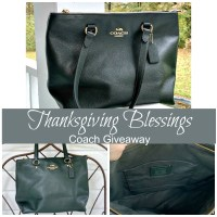 Thanksgiving Blessings Coach Giveaway #giveaway #win