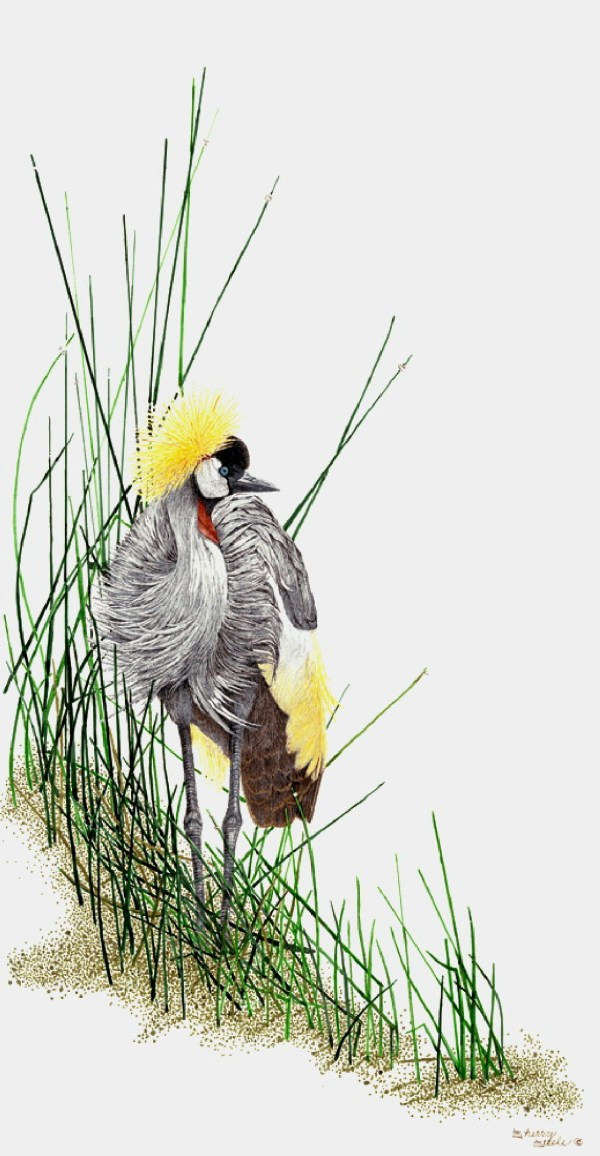 Sherry Steele Artwork - Dressed to Impress | Crane