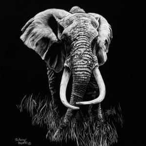 Sherry Steele Artwork - Mawingu | Elephant