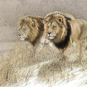 Sherry Steele Artwork - Power Brokers | Lions