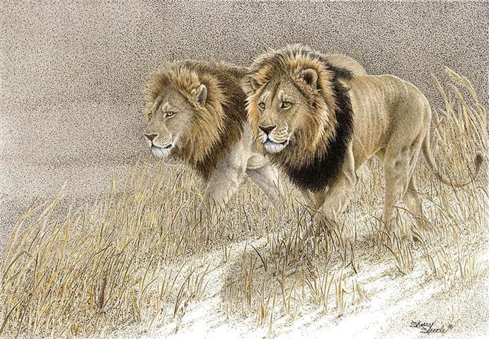 Power Brokers | Lions