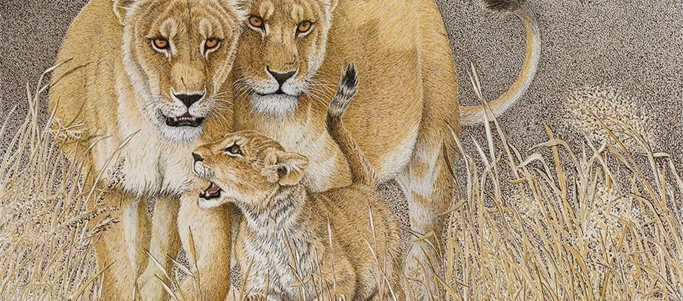 Sherry Steele Artwork - Pride and Joy | Lions