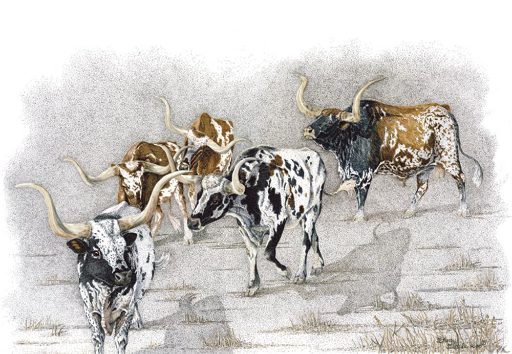 Some Can, Some Can't | Longhorns
