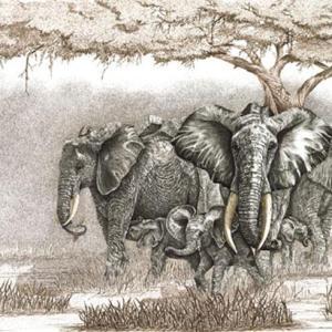 Sherry Steele Artwork - Spirit of Mother Africa | Elephants