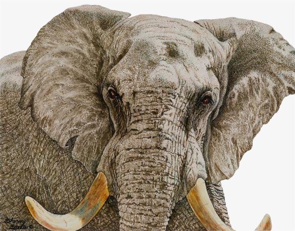 Sherry Steele Artwork - Ultimatum | Elephant
