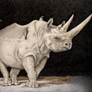 Sherry Steele Artwork - Point of No Return | Rhinos