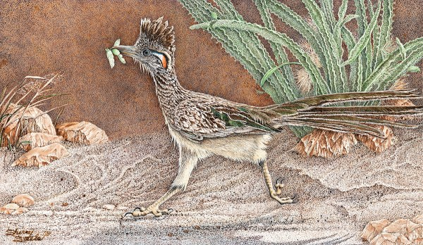 Heading For Home Roadrunner Pen and Ink Artwork by Sherry Steele