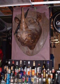 rhinohead