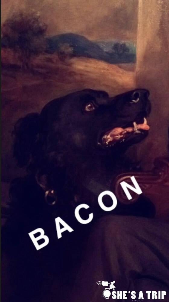 Art Museum Snapchats Art History Snapchats Funny Art Captions