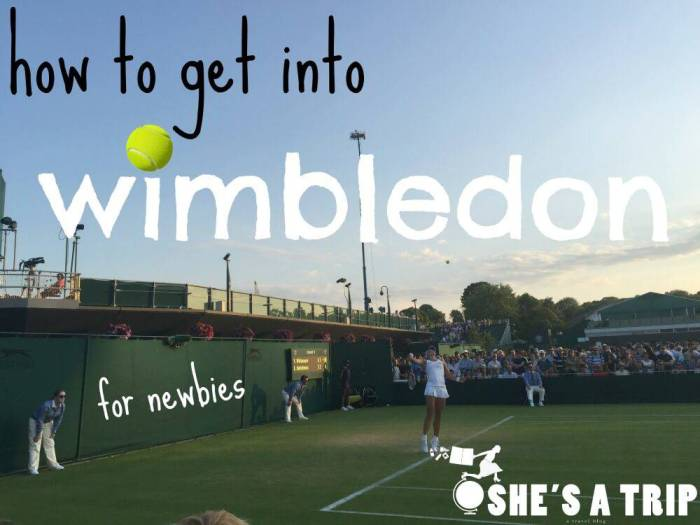 How-to-Get-into-Wimbledon-for-Newbies tennis court