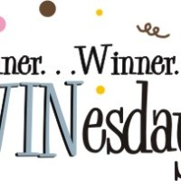 Winner, Winner, WINesday #4: Hanes Comfort Flex Fit Bras & Comfort Toe Seam Socks Review & Giveaway