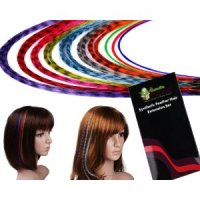 20 Piece Feather Hair Extensions Kit for $13.50 with FREE shipping!