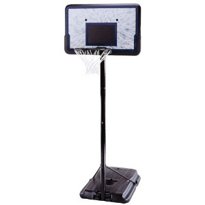 Lifetime Pro Basketball Hoop