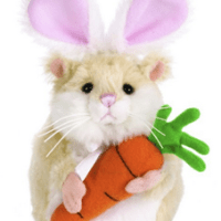 Webkinz Hamster For $4.99 Shipped