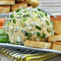 Buffalo Chicken Cheese Ball