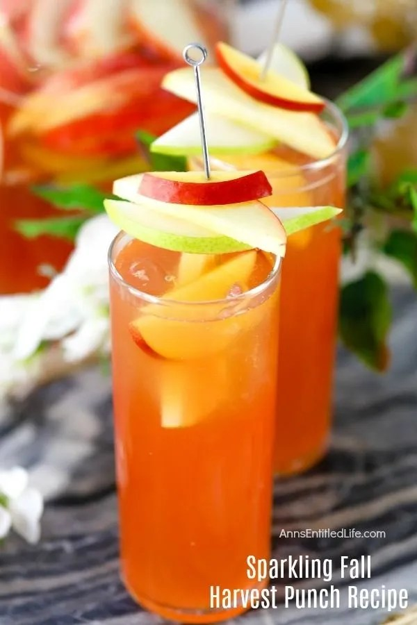 Fall Harvest Punch