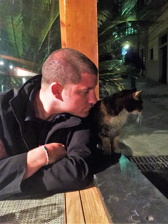 < Riomaggiore cats >
