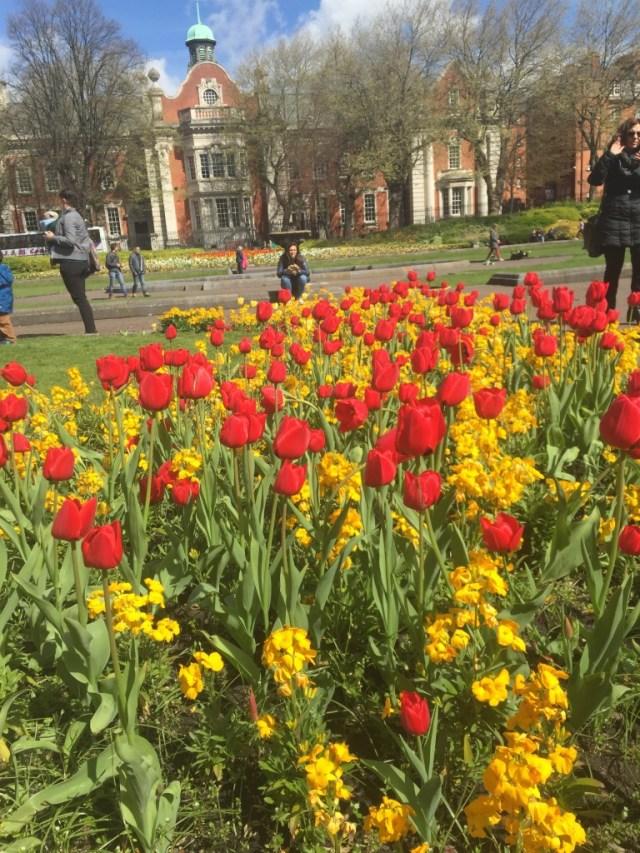 <Dublin Flowers>