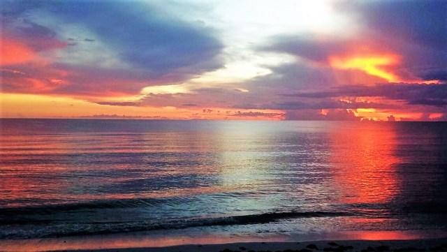< Naples, Florida >
