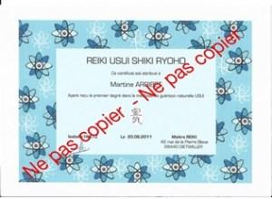 diplome_reiki_usui_shiki_ryoho