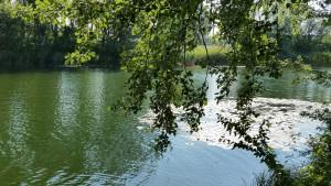 Im Fluss des Lebens