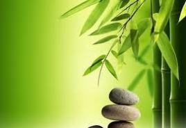 Zen und Shiatsu als ganzheitliche Hilfsmittel für Körper, Geist und Seele