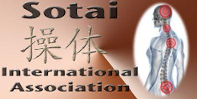 Sotai Curso Internacional. Asociación de sotai