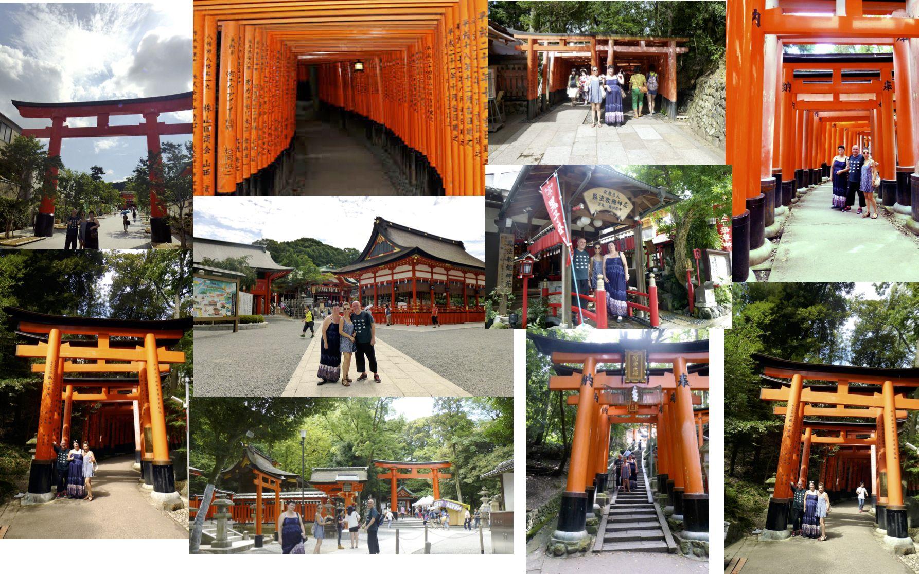 Shiatsu Master en Japón, Fushimi Inari Taisha 伏見稲荷大社 camino de los toris rojos