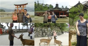 Shiatsu Master en Japón, Visita Miyajima