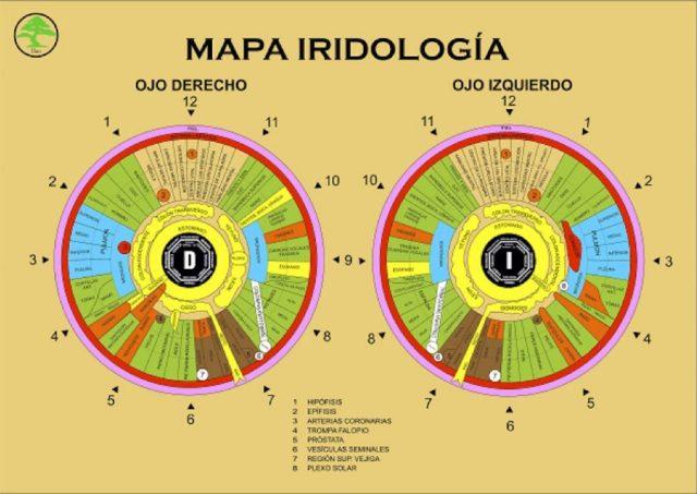 Iridiologia Curso
