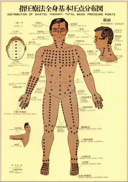 The Namikoshi Shiatsu Points on the front of the body