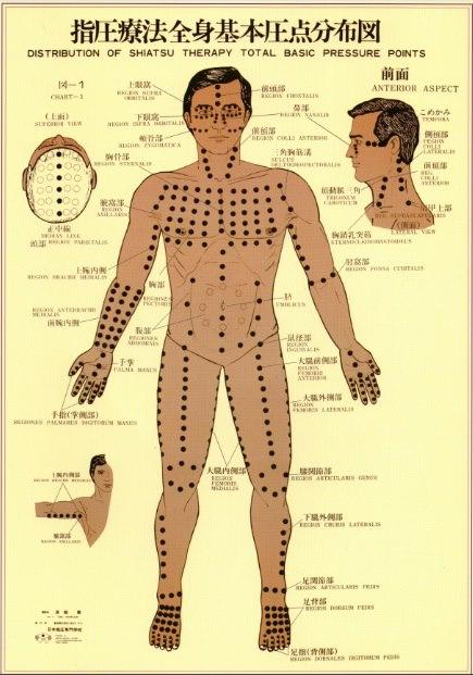 The Namikoshi Shiatsu Points on the front of the body