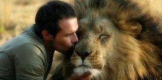 man kissing lion